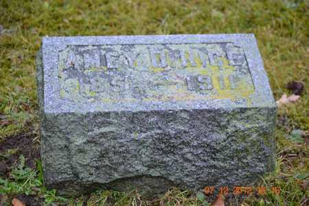 RICE, AMEY D. - Branch County, Michigan | AMEY D. RICE - Michigan Gravestone Photos