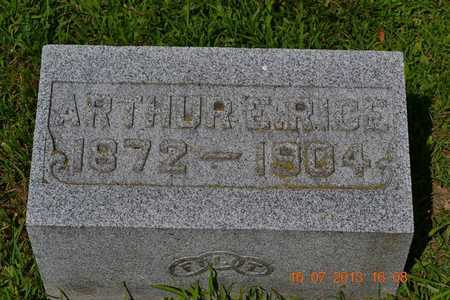 RICE, ARTHUR E. - Branch County, Michigan | ARTHUR E. RICE - Michigan Gravestone Photos