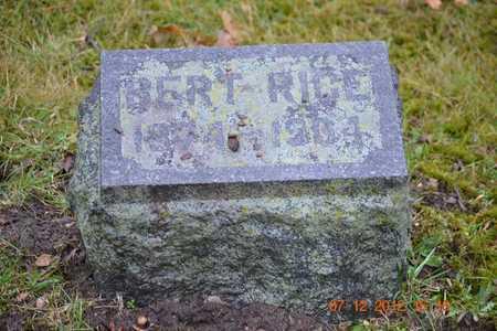 RICE, BERT - Branch County, Michigan | BERT RICE - Michigan Gravestone Photos