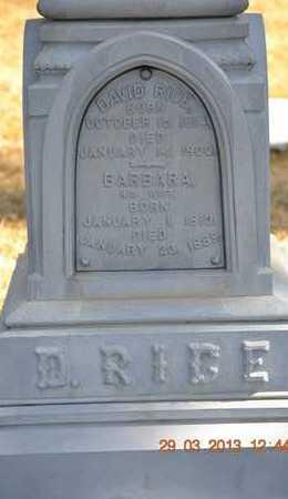 RICE, BARBARA - Branch County, Michigan | BARBARA RICE - Michigan Gravestone Photos