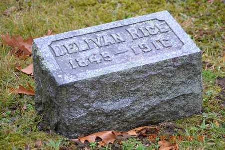 RICE, DELIVAN - Branch County, Michigan | DELIVAN RICE - Michigan Gravestone Photos