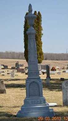 RICE, FAMILY - Branch County, Michigan | FAMILY RICE - Michigan Gravestone Photos