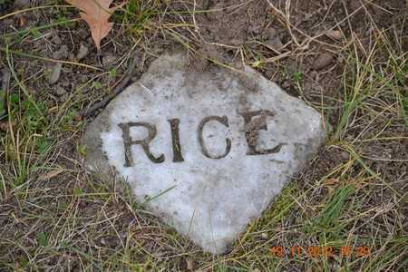 RICE, FAMILY PLOT MARKER - Branch County, Michigan | FAMILY PLOT MARKER RICE - Michigan Gravestone Photos