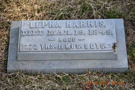 RICE, LEPHA - Branch County, Michigan | LEPHA RICE - Michigan Gravestone Photos