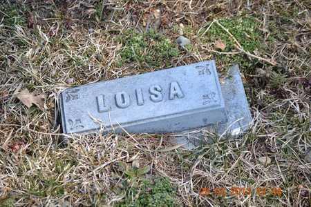 RICE, LOISA A. - Branch County, Michigan | LOISA A. RICE - Michigan Gravestone Photos