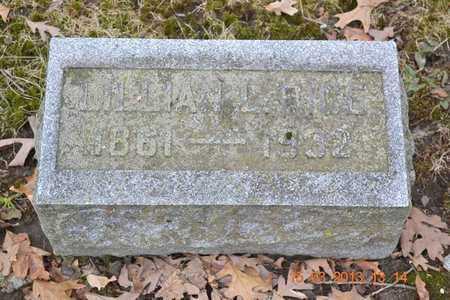 RICE, LILLIAN L. - Branch County, Michigan   LILLIAN L. RICE - Michigan Gravestone Photos