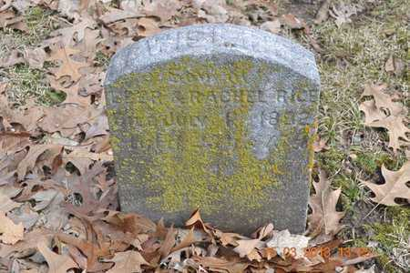 RICE, LEWIS E. - Branch County, Michigan | LEWIS E. RICE - Michigan Gravestone Photos