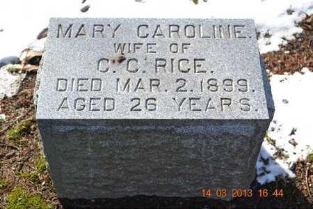 RICE, MARY CAROLINE - Branch County, Michigan | MARY CAROLINE RICE - Michigan Gravestone Photos