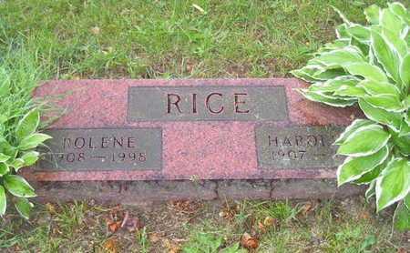 RICE, ROLENE - Branch County, Michigan | ROLENE RICE - Michigan Gravestone Photos