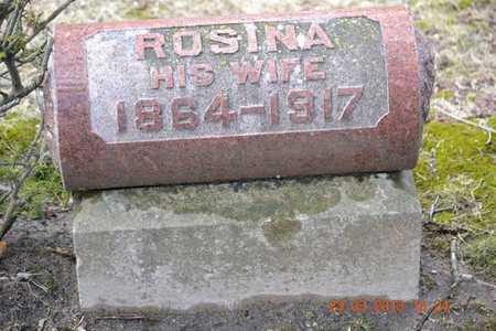 RICE, ROSINA - Branch County, Michigan | ROSINA RICE - Michigan Gravestone Photos