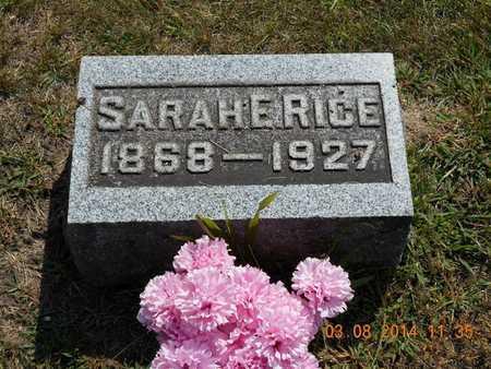 RICE, SARAH E. - Branch County, Michigan   SARAH E. RICE - Michigan Gravestone Photos