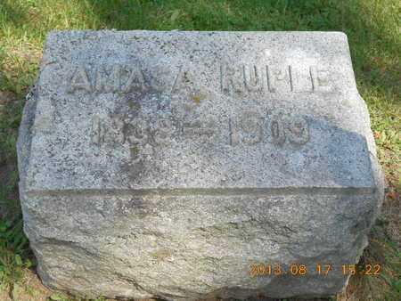 RUPLE, AMASA - Branch County, Michigan | AMASA RUPLE - Michigan Gravestone Photos