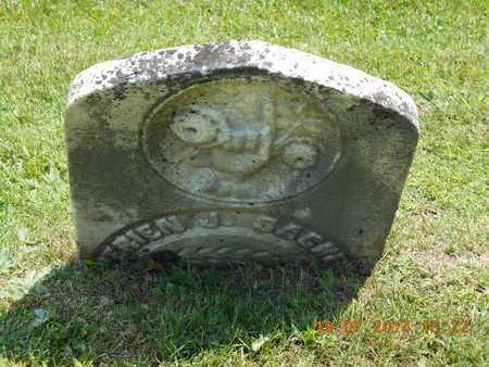 SACKETT, WERIEN J. - Branch County, Michigan | WERIEN J. SACKETT - Michigan Gravestone Photos