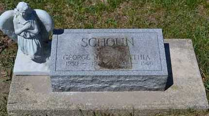 SCHOUN, CYNTHIA - Branch County, Michigan | CYNTHIA SCHOUN - Michigan Gravestone Photos