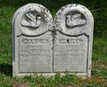 SHAW, DANIEL - Branch County, Michigan   DANIEL SHAW - Michigan Gravestone Photos
