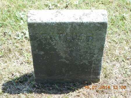 SIMMONS, EDWARD - Branch County, Michigan   EDWARD SIMMONS - Michigan Gravestone Photos