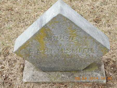 SMITH, BRUCIE - Branch County, Michigan | BRUCIE SMITH - Michigan Gravestone Photos