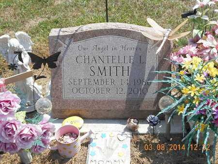 SMITH, CHANTELLE L. - Branch County, Michigan | CHANTELLE L. SMITH - Michigan Gravestone Photos