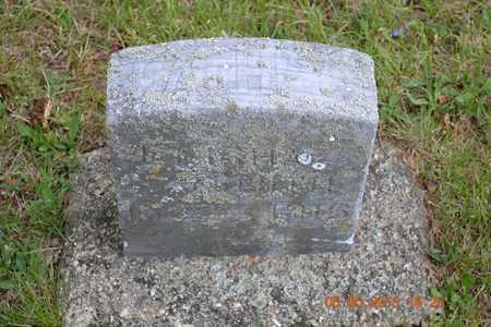 SMITH, ELISHA - Branch County, Michigan   ELISHA SMITH - Michigan Gravestone Photos