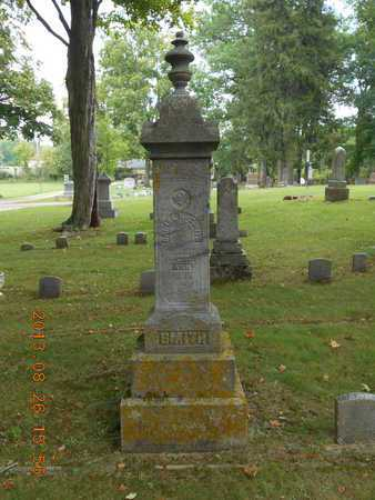 SMITH, FAMILY - Branch County, Michigan   FAMILY SMITH - Michigan Gravestone Photos