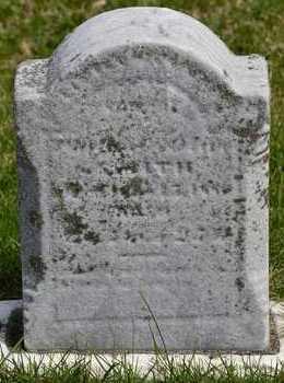 SMITH, MERTEN E. - Branch County, Michigan | MERTEN E. SMITH - Michigan Gravestone Photos