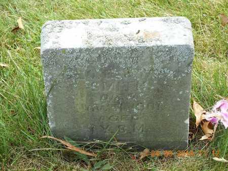 SMITH, MILO D. - Branch County, Michigan | MILO D. SMITH - Michigan Gravestone Photos