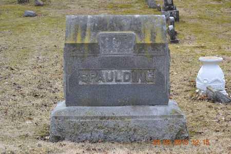 SPAULDING, FAMILY - Branch County, Michigan | FAMILY SPAULDING - Michigan Gravestone Photos
