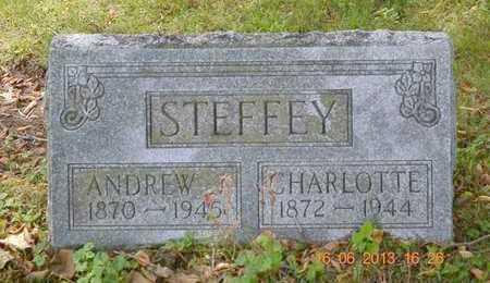 STEFFEY, CHARLOTTE - Branch County, Michigan | CHARLOTTE STEFFEY - Michigan Gravestone Photos