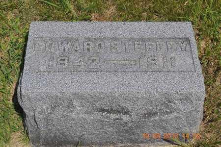 STEFFEY, EDWARD - Branch County, Michigan | EDWARD STEFFEY - Michigan Gravestone Photos