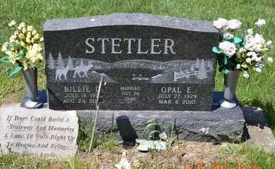 STETLER, BILLIE D. - Branch County, Michigan | BILLIE D. STETLER - Michigan Gravestone Photos