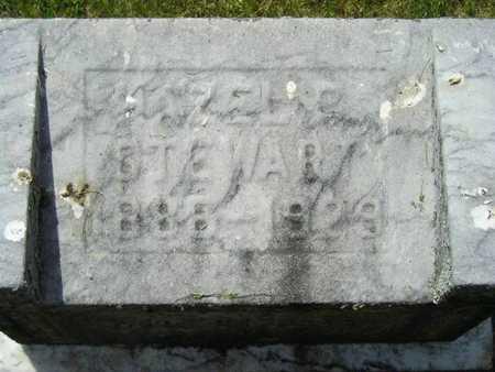 STEWART, HAZEL E. - Branch County, Michigan | HAZEL E. STEWART - Michigan Gravestone Photos