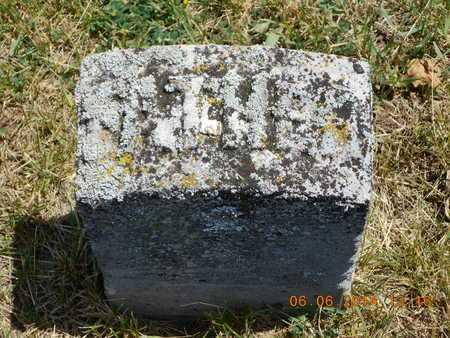 STRONG, NATHAN A. - Branch County, Michigan | NATHAN A. STRONG - Michigan Gravestone Photos