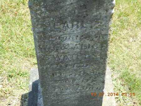 SWARTZ, PEARLIE - Branch County, Michigan   PEARLIE SWARTZ - Michigan Gravestone Photos