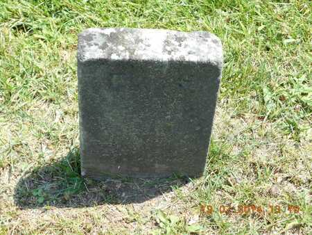 SWORTZ, ELLIS - Branch County, Michigan | ELLIS SWORTZ - Michigan Gravestone Photos