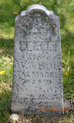 TALMADGE, FRANK - Branch County, Michigan | FRANK TALMADGE - Michigan Gravestone Photos