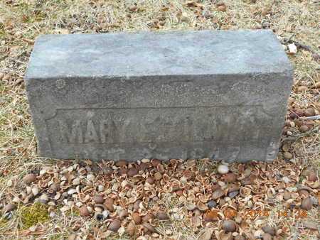 TILMAN, MARY E. - Branch County, Michigan | MARY E. TILMAN - Michigan Gravestone Photos