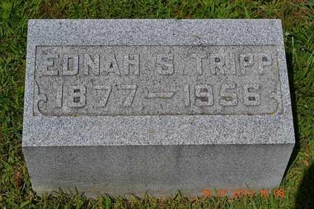TRIPP, EDNAH - Branch County, Michigan | EDNAH TRIPP - Michigan Gravestone Photos