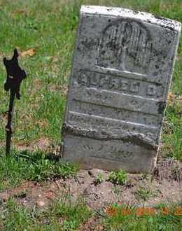 WAIT, ALFRED D. - Branch County, Michigan | ALFRED D. WAIT - Michigan Gravestone Photos