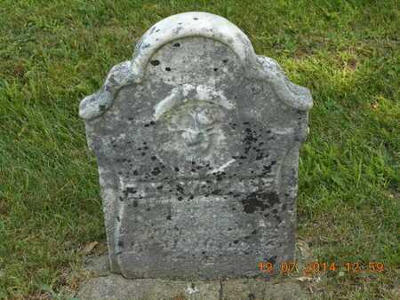 WALLACE, ELY - Branch County, Michigan | ELY WALLACE - Michigan Gravestone Photos