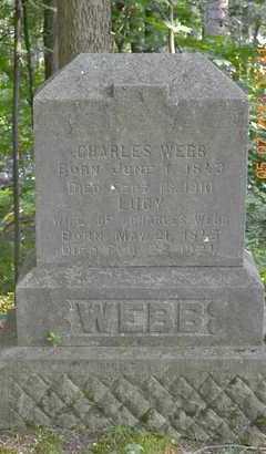 WEBB, CHARLES - Branch County, Michigan   CHARLES WEBB - Michigan Gravestone Photos