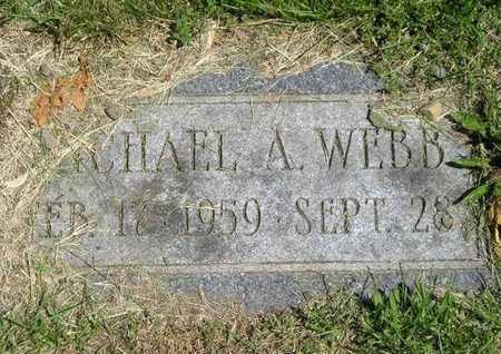 WEBB, MICHAEL A. - Branch County, Michigan | MICHAEL A. WEBB - Michigan Gravestone Photos