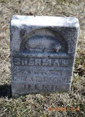 WEBB, SHERMAN - Branch County, Michigan   SHERMAN WEBB - Michigan Gravestone Photos