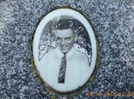 WEBSTER, WILLIAM JACKSON - Branch County, Michigan | WILLIAM JACKSON WEBSTER - Michigan Gravestone Photos