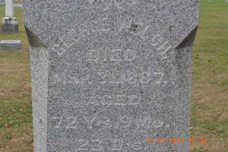 WELCH, GEORGE - Branch County, Michigan | GEORGE WELCH - Michigan Gravestone Photos