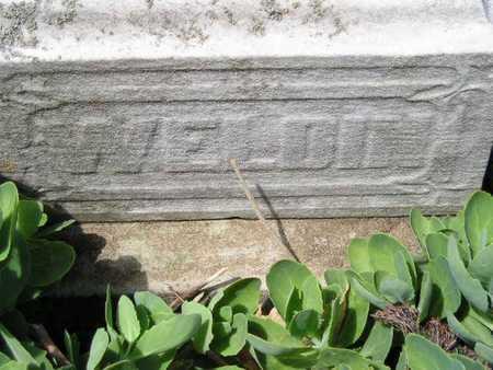 WELDIN, SUSAN - Branch County, Michigan | SUSAN WELDIN - Michigan Gravestone Photos