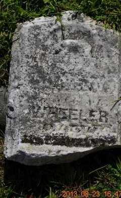WHEELER, FRANKY - Branch County, Michigan   FRANKY WHEELER - Michigan Gravestone Photos