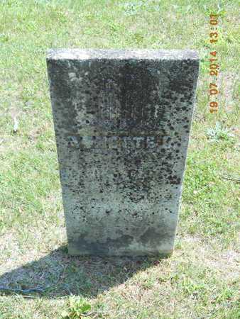 WILDER, ANNETTE L. - Branch County, Michigan | ANNETTE L. WILDER - Michigan Gravestone Photos