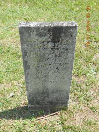 WILDER, EUGENE E. - Branch County, Michigan | EUGENE E. WILDER - Michigan Gravestone Photos