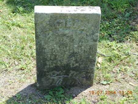 WILDER, LUCIEN M. - Branch County, Michigan | LUCIEN M. WILDER - Michigan Gravestone Photos
