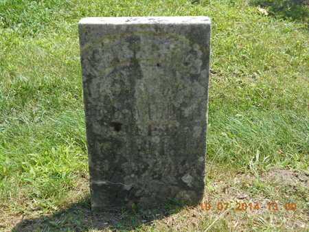 WILDER, WALTER C. - Branch County, Michigan | WALTER C. WILDER - Michigan Gravestone Photos